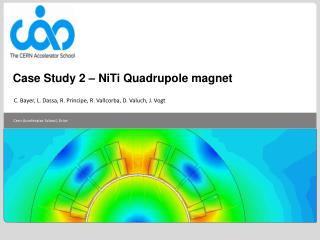 Case Study 2 –  NiTi Quadrupole  magnet