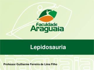 Professor Guilherme Ferreira de Lima Filho