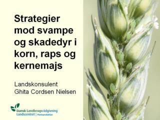 """""""Nye"""" svampemidler i korn 2010"""