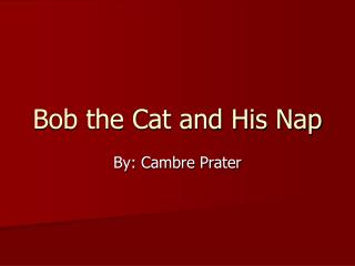 Bob the Cat and His Nap