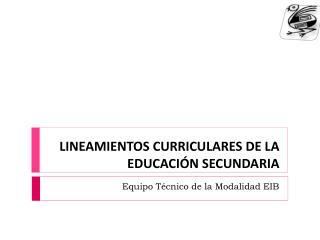 LINEAMIENTOS CURRICULARES DE LA EDUCACIÓN SECUNDARIA