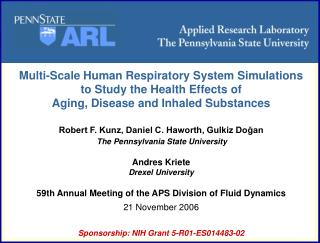 Multi-Scale Human Respiratory System Simulations  to Study the Health Effects of
