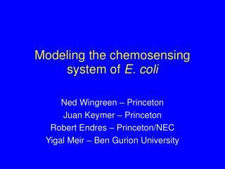 Modeling the chemosensing system of  E. coli