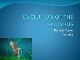 EVOLUTION OF THE PLATYPUS
