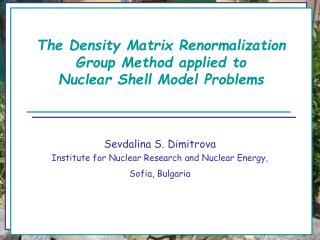 The Density Matrix Renormalization Group Method applied to Nuclear Shell Model Problems