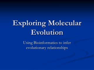 Exploring Molecular Evolution