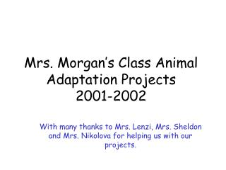 Mrs. Morgan s Class Animal Adaptation Projects 2001-2002