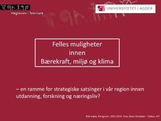 – en ramme for strategiske satsinger i vår region innen utdanning, forskning og næringsliv?