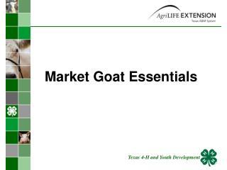 Market Goat Essentials