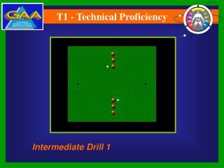 T1 - Technical Proficiency