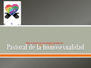 Pastoral de la homosexualidad