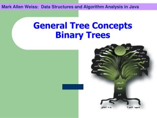 General Tree Concepts Binary Trees