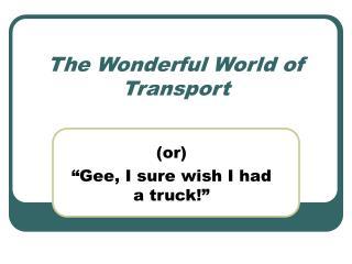 The Wonderful World of Transport