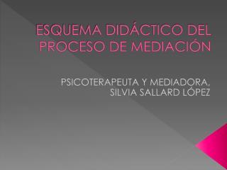 ESQUEMA DIDÁCTICO DEL PROCESO DE MEDIACIÓN