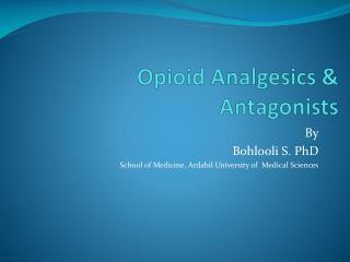 Opioid Analgesics & Antagonists