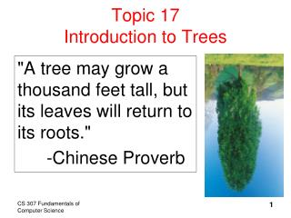 Topic 17 Introduction to Trees
