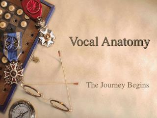 vocalanatomy