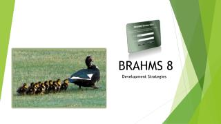 BRAHMS 8