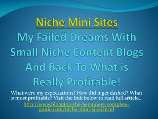 Niche Mini Sites Income - Practical Tips