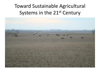 Toward Sustainable Agricultural Systems in the 21 st  Century