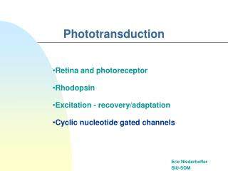 Phototransduction
