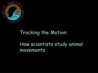 Tracking the Motion: How scientists study animal movements