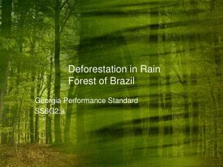 Deforestation in Rain Forest of Brazil