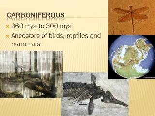Carboniferous