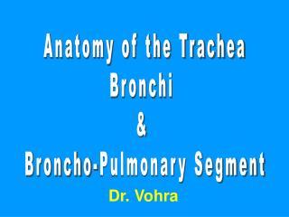 Anatomy of the Trachea Bronchi  &  Broncho-Pulmonary Segment