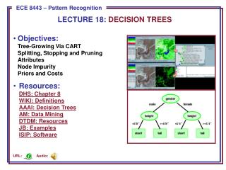LECTURE  18:  DECISION TREES
