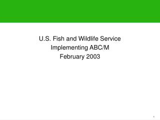 U.S. Fish and Wildlife Service  Implementing ABC/M February 2003