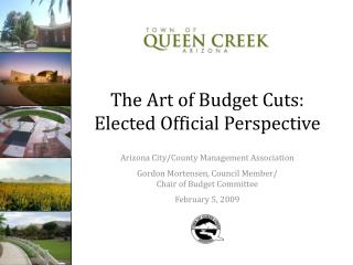 The Art of Budget Cuts: Elected Official Perspective