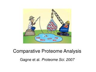 Comparative Proteome Analysis