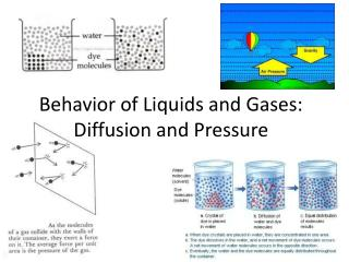Behavior  of Liquids and Gases: Diffusion and Pressure