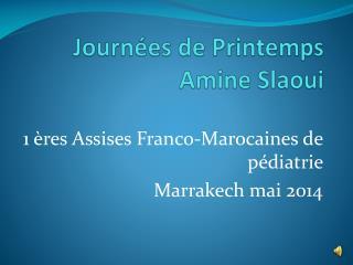 Journées de Printemps Amine  Slaoui