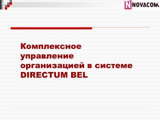 Комплексное управление организацией в системе  DIRECTUM BEL