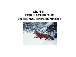 Ch. 44:   REGULATING THE  INTERNAL ENVIRONMENT