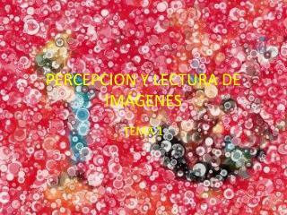 PERCEPCION Y LECTURA DE IM�GENES