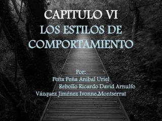 CAPITULO VI  LOS ESTILOS DE COMPORTAMIENTO