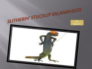 Slitherin '  Stuckup  Salamander