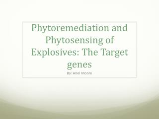 Phytoremediation and  P hytosensing  of Explosives: The  T arget genes