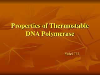 Properties of Thermostable DNA Polymerase
