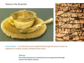 Texture in the Visual Arts