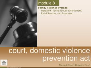 Court, domestic violence  prevention act