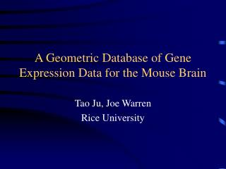 A Geometric Database of Gene Expression Data for the Mouse Brain