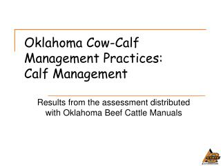 Oklahoma Cow-Calf Management Practices: Calf Management