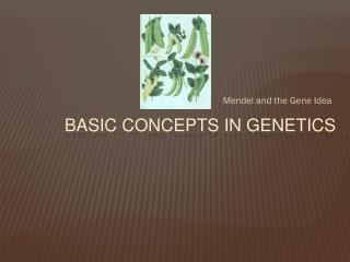 Basic Concepts in Genetics