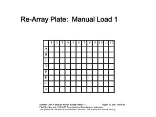 Re-Array Plate:  Manual Load 1