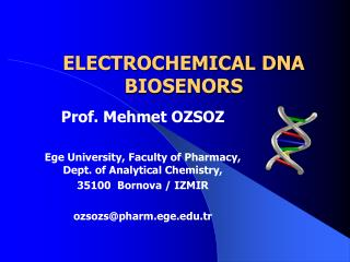 ELECTROCHEMICAL  DNA BIOSENORS