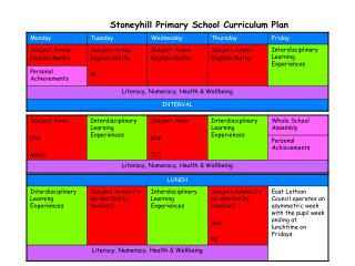 Stoneyhill Primary School Curriculum Plan